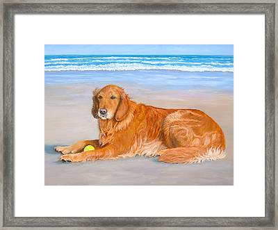 Golden Murphy Framed Print