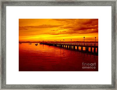 Golden Nature Framed Print by Boon Mee
