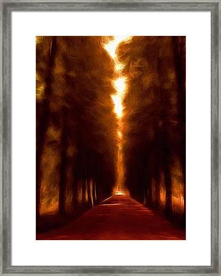 Golden October Framed Print by Steve K
