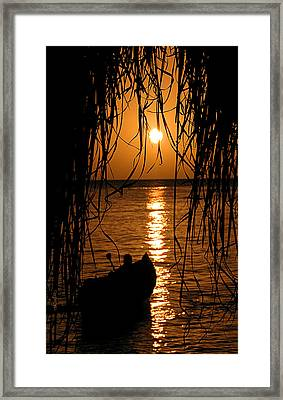 Golden Palapa Framed Print