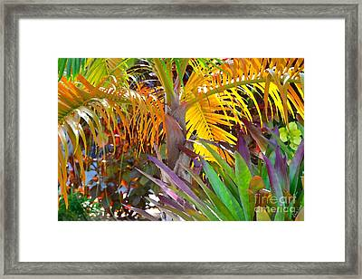 Framed Print featuring the photograph Golden Palm 2 by Darla Wood