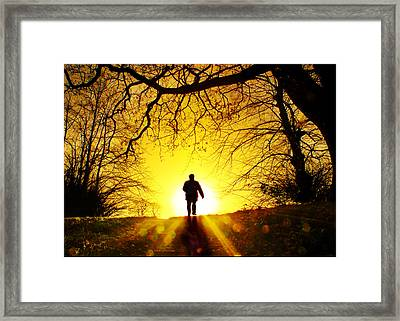 Golden Path Framed Print by Adrian Campfield