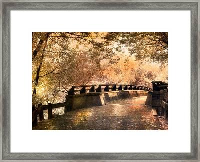 Golden Pathway - Mine Falls Park Framed Print by Joann Vitali