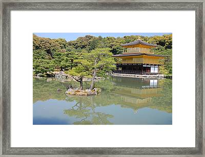 Golden Pavilion Framed Print