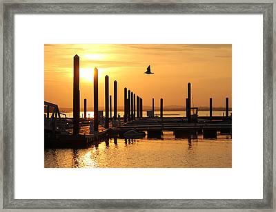 Golden Pier At Sunset Framed Print by Patricia Abbate
