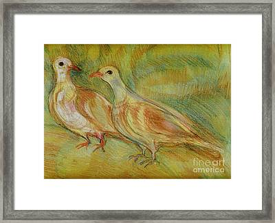 Golden Pigeons Framed Print
