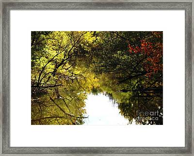 Golden Pond With Oil Painting Effect Framed Print by Rose Santuci-Sofranko