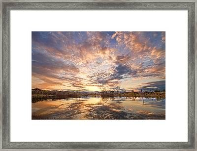 Golden Ponds Scenic Sunset Reflections 3 Framed Print by James BO  Insogna