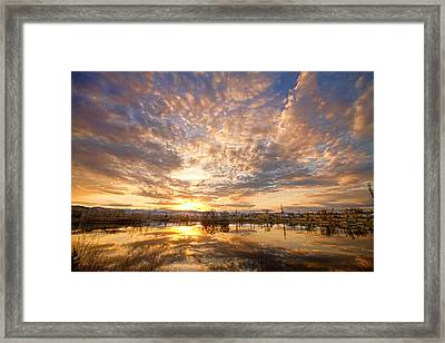 Golden Ponds Scenic Sunset Reflections 5 Framed Print by James BO  Insogna