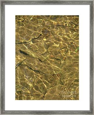 Golden Pool Framed Print