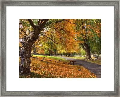 Golden Public Garden Framed Print by Joann Vitali