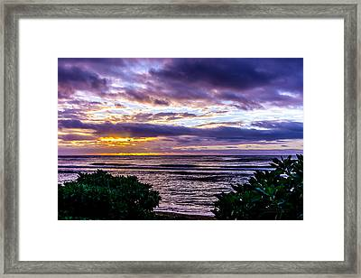 Golden Rays Framed Print