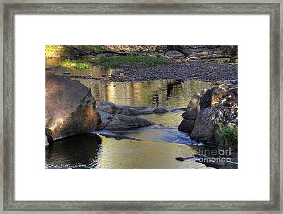 Golden Reflections Framed Print