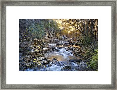 Golden Reflections Framed Print by Debra and Dave Vanderlaan