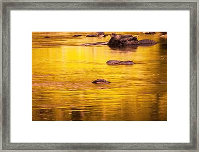 Golden Reflections North Fork Flathead River Painted Framed Print by Rich Franco