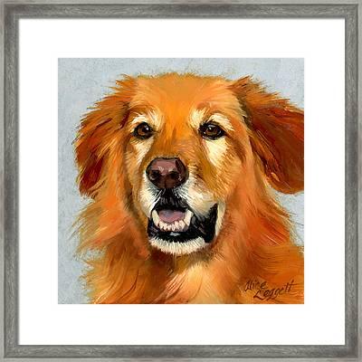 Golden Retriever Dog Framed Print by Alice Leggett