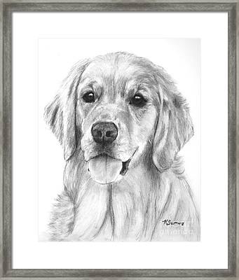 Golden Retriever Jessie Adult Framed Print by Kate Sumners