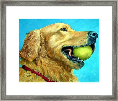 Golden Retriever Profile With Tennis Ball Framed Print by Dottie Dracos