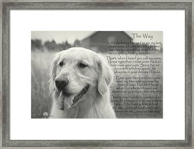 Golden Retriever The Way Framed Print by Sue Long