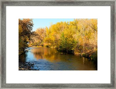 Golden River Framed Print
