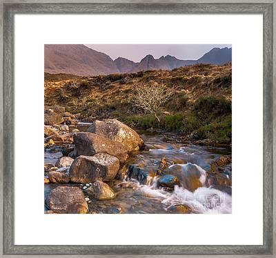 Golden River Framed Print by Maciej Markiewicz
