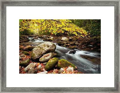 Golden River Rush Framed Print