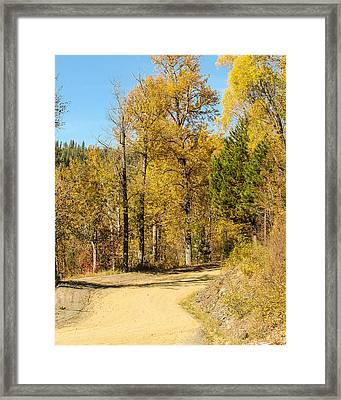 Golden Road 2 Framed Print by Curtis Stein