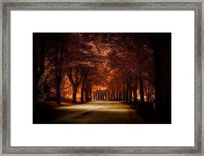 Golden Road Framed Print by Marek Czaja
