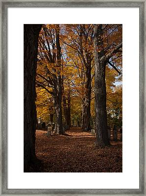 Framed Print featuring the photograph Golden Rows Of Maples Guide The Way by Jeff Folger