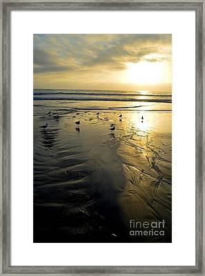 Golden Sandy Canvas Framed Print