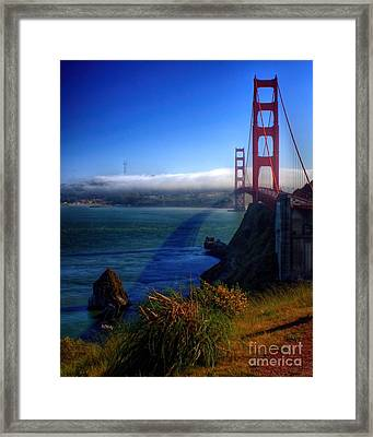Golden Shadow Framed Print by Patrick Witz