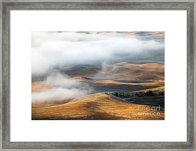 Golden Shadows Framed Print by Mike  Dawson