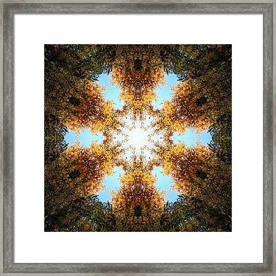 Golden Shimmer K2 Framed Print