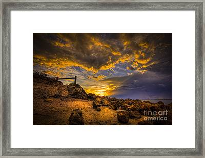 Golden Shore Framed Print