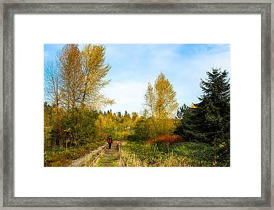 Framed Print featuring the photograph Golden Shortcut by Crystal Hoeveler