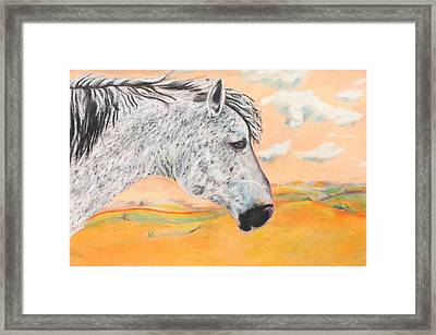 Golden Sky Framed Print by Jeanne Fischer