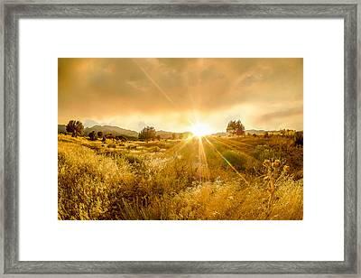 Golden Smoke Framed Print