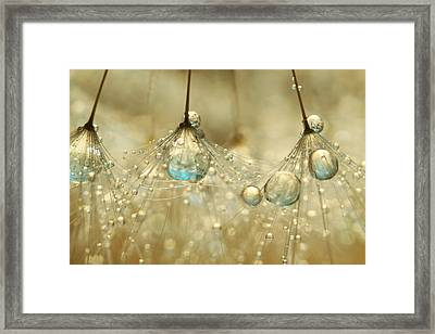 Framed Print featuring the photograph Golden Sparkles by Sharon Johnstone