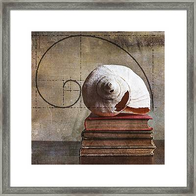 Golden Spirals Framed Print by Terry Rowe