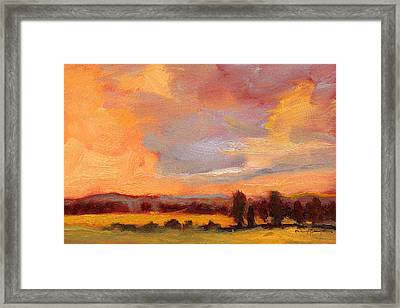 Golden Splendor Framed Print