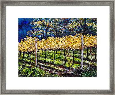 Golden Splendor Framed Print by Michael Durst