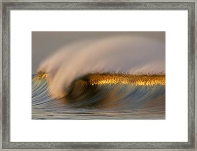 Golden Stripe Mg_9094 Framed Print