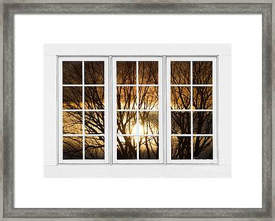 Golden Sun Silhouetted Tree Branches White Window View Framed Print