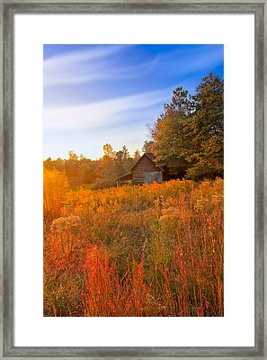 Golden Sunlight On A Fall Morning - North Georgia Framed Print by Mark E Tisdale