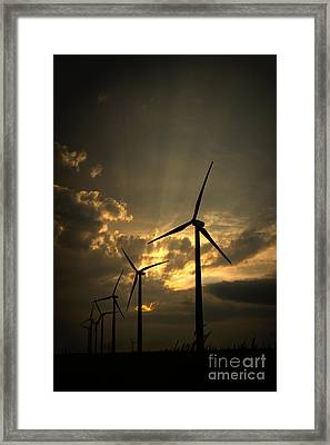Framed Print featuring the photograph Golden Sunset 1 by Jim McCain