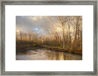 Golden Sunset Framed Print by Ann Bridges
