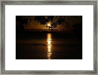 Golden Sunset Framed Print by David Berner
