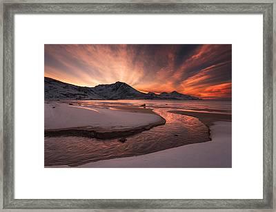 Golden Sunset Framed Print by Jaroslav Zakravsky