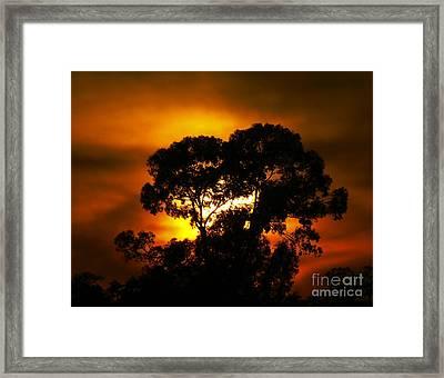 Golden Sunset... Framed Print