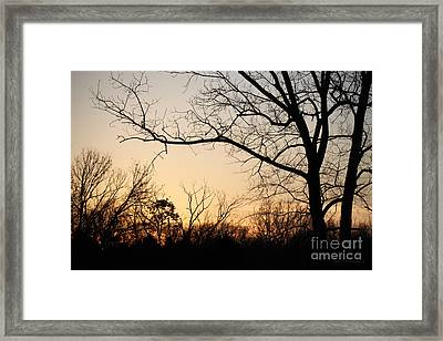 Golden Sunset Framed Print by Todd A Blanchard